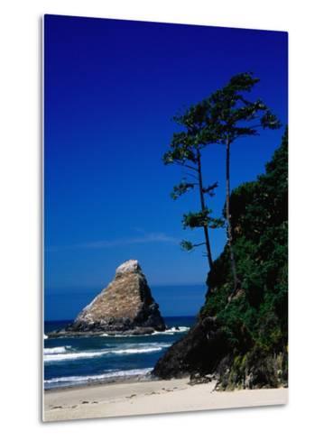 Rocky Outcrop at Heceta Head State Beach, Near Florence, Florence, Oregon-Richard Cummins-Metal Print