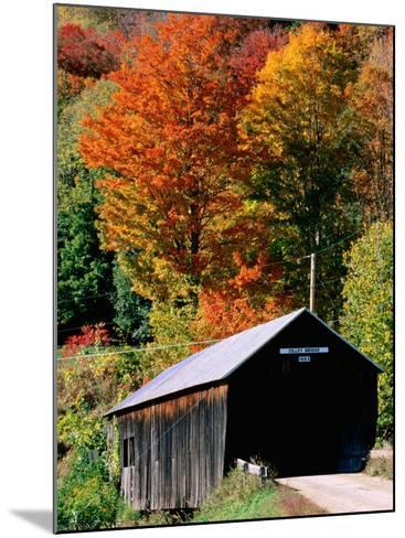 Autumn Leaves Surrounding Cilley Covered Bridge, Vermont-John Elk III-Mounted Photographic Print