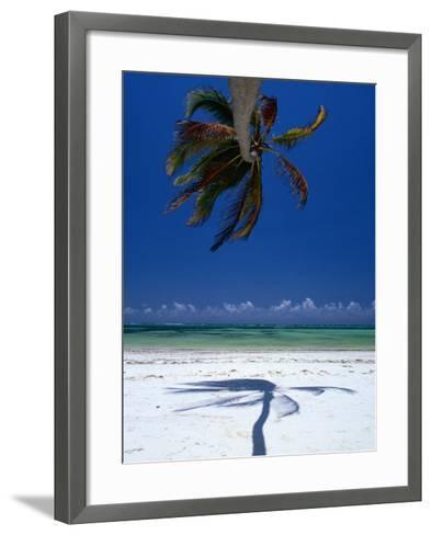 Horizontal Palm Tree and Its Shadow on White-Sand Bweju Beach, Zanzibar, Tanzania-Greg Elms-Framed Art Print