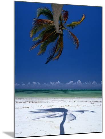Horizontal Palm Tree and Its Shadow on White-Sand Bweju Beach, Zanzibar, Tanzania-Greg Elms-Mounted Photographic Print