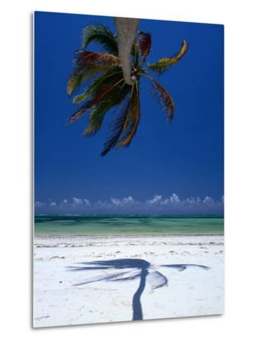 Horizontal Palm Tree and Its Shadow on White-Sand Bweju Beach, Zanzibar, Tanzania-Greg Elms-Metal Print