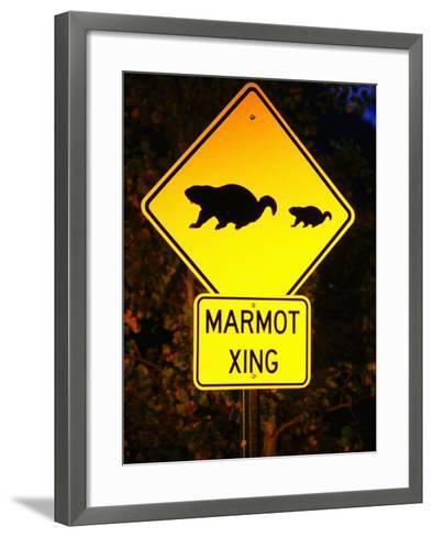 Marmot Crossing Sign Near Maroon Bells, Aspen, Colorado-Holger Leue-Framed Art Print