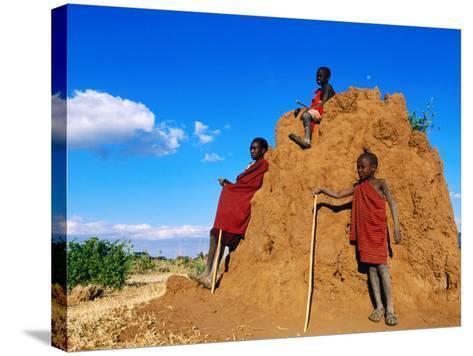 Three Young Maasai Goat Herds on a Termite Mound, Longido, Arusha, Tanzania-Ariadne Van Zandbergen-Stretched Canvas Print