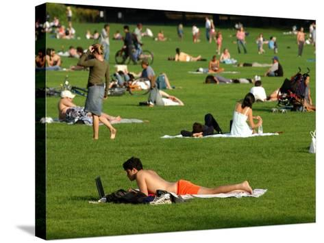 Lawn Scene, Central Park, New York City, New York-Dan Herrick-Stretched Canvas Print