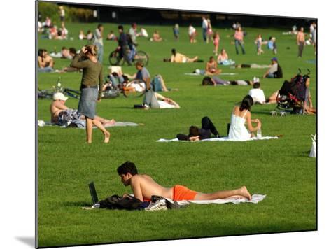 Lawn Scene, Central Park, New York City, New York-Dan Herrick-Mounted Photographic Print
