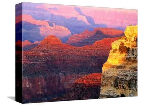 Grand Canyon from South Rim at Hopi Point, Grand Canyon National Park, Arizona-David Tomlinson-Stretched Canvas Print