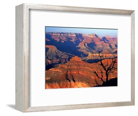 Grand Canyon from South Rim Near Yavapai Point, Grand Canyon National Park, Arizona-David Tomlinson-Framed Art Print