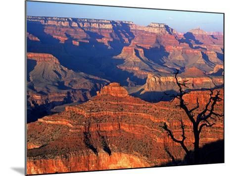 Grand Canyon from South Rim Near Yavapai Point, Grand Canyon National Park, Arizona-David Tomlinson-Mounted Photographic Print