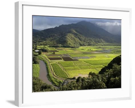 Hanalei Valley with Taro Fields Below, Kauai, Hawaii-John Elk III-Framed Art Print