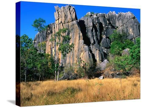 Limestone Towers on Walking Trail from Donna Cave to Royal Arch Cave, Queensland, Australia-Ross Barnett-Stretched Canvas Print