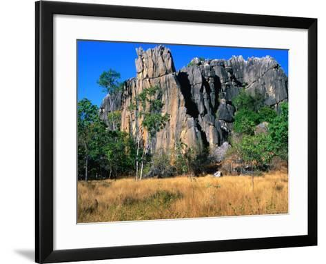 Limestone Towers on Walking Trail from Donna Cave to Royal Arch Cave, Queensland, Australia-Ross Barnett-Framed Art Print