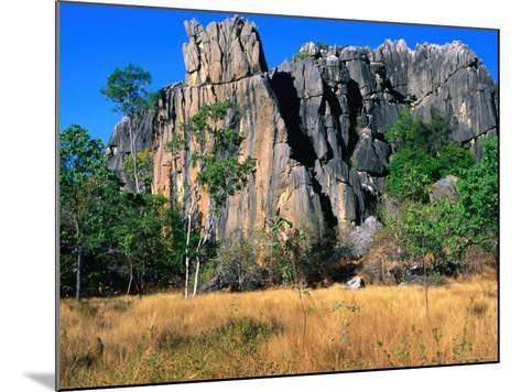 Limestone Towers on Walking Trail from Donna Cave to Royal Arch Cave, Queensland, Australia-Ross Barnett-Mounted Photographic Print