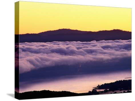 Mist Rolling over Vineyards, Napa, California-Oliver Strewe-Stretched Canvas Print