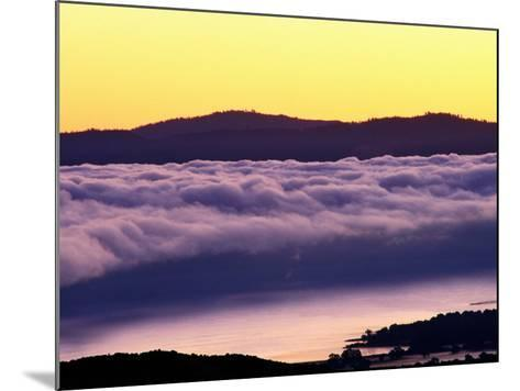 Mist Rolling over Vineyards, Napa, California-Oliver Strewe-Mounted Photographic Print