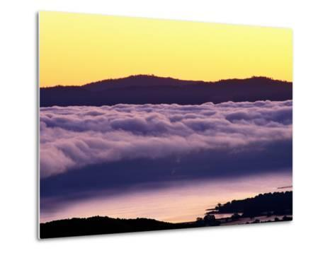 Mist Rolling over Vineyards, Napa, California-Oliver Strewe-Metal Print
