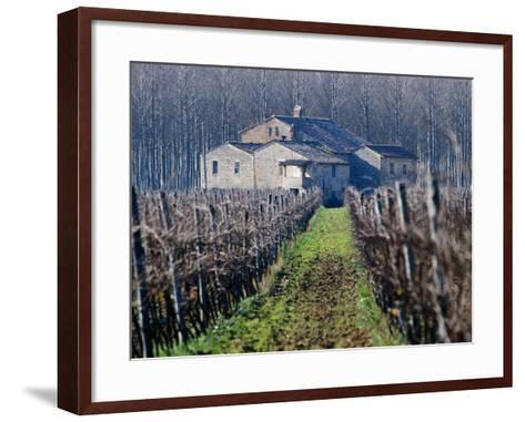 Winery Vines and Buildng, Torgiano, Umbria, Italy-Oliver Strewe-Framed Art Print