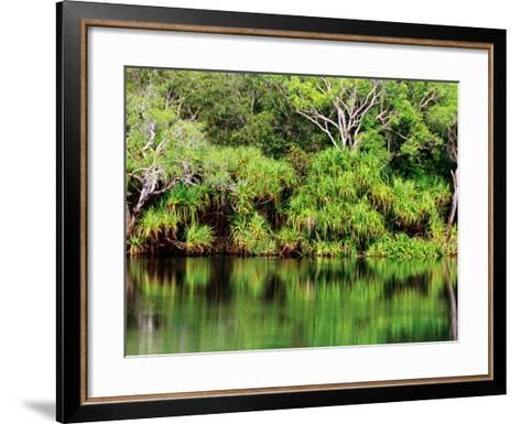 Mardugal Billabong, Kakadu National Park, Northern Territory, Australia-John Banagan-Framed Art Print