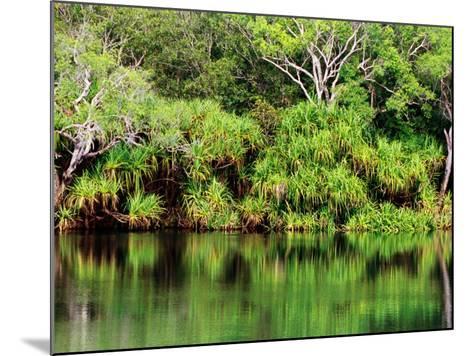Mardugal Billabong, Kakadu National Park, Northern Territory, Australia-John Banagan-Mounted Photographic Print
