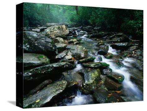 Water Flowing over Rocks in Alum Creek, Great Smoky Mountains National Park, Tennessee-John Elk III-Stretched Canvas Print