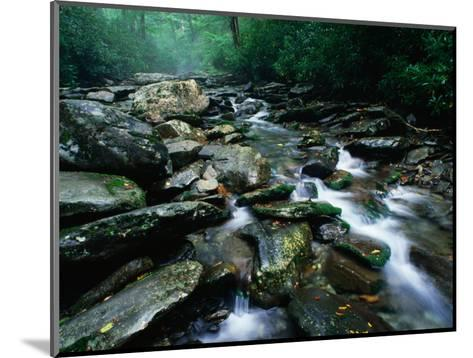 Water Flowing over Rocks in Alum Creek, Great Smoky Mountains National Park, Tennessee-John Elk III-Mounted Photographic Print