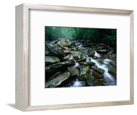 Water Flowing over Rocks in Alum Creek, Great Smoky Mountains National Park, Tennessee-John Elk III-Framed Art Print