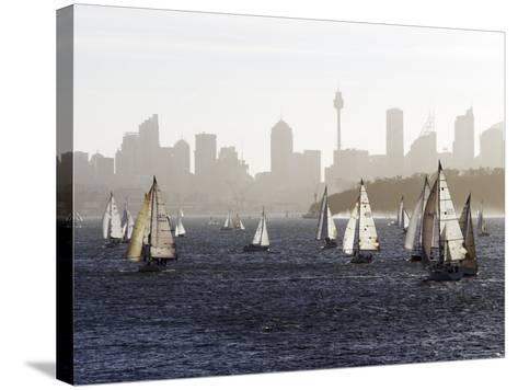 Yachts on Sydney Harbour in Late Afternoon-Oliver Strewe-Stretched Canvas Print