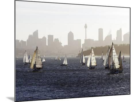 Yachts on Sydney Harbour in Late Afternoon-Oliver Strewe-Mounted Photographic Print