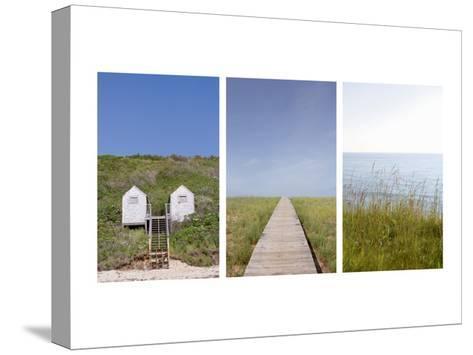 Beach Path Triptych--Stretched Canvas Print