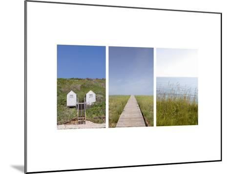 Beach Path Triptych--Mounted Photo