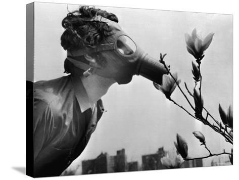 Earth Day, New York, New York, c.1970--Stretched Canvas Print