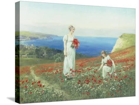 Gathering Poppies-Henry John Yeend King-Stretched Canvas Print