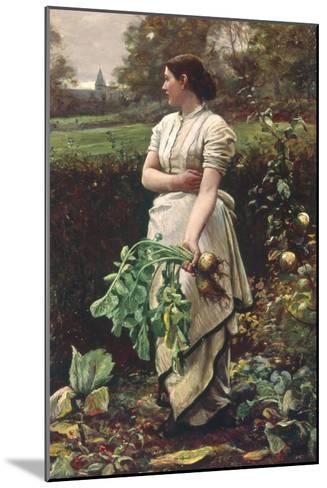 Picking Turnips-Robert Crawford-Mounted Giclee Print