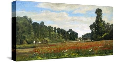 The Poppy Field-Hippolyte Delpy-Stretched Canvas Print
