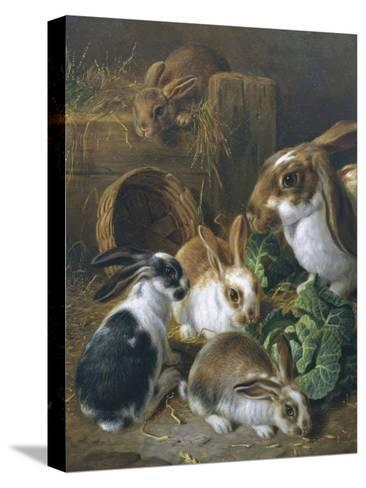 Feeding Time-Alfred Barber-Stretched Canvas Print