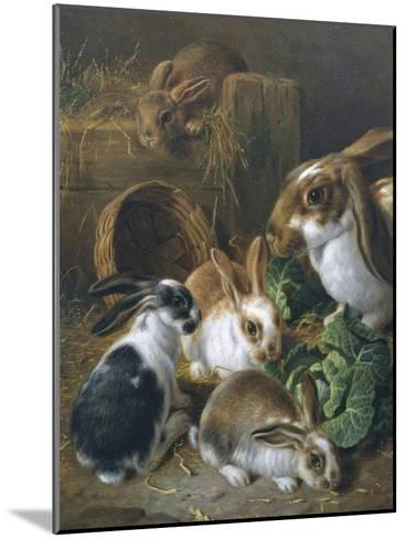 Feeding Time-Alfred Barber-Mounted Giclee Print