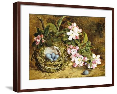 Apple Blossom and a Bird's Nest-H. Barnard Grey-Framed Art Print