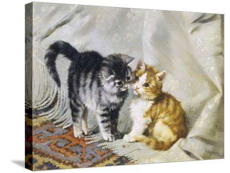 The Introduction: Silver and Ginger Kittens-Julius Adam-Stretched Canvas Print