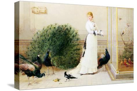 In the Conservatory-Heywood Hardy-Stretched Canvas Print