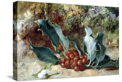 Christmas Holly-Jabez Bligh-Stretched Canvas Print