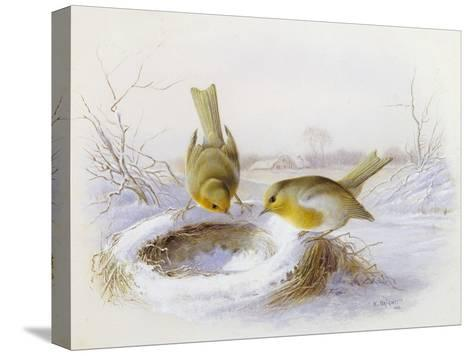 Last Year's Nest-Harry Bright-Stretched Canvas Print