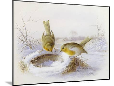Last Year's Nest-Harry Bright-Mounted Giclee Print