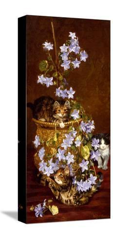Kittens and Flowers, c.1903-Wilson Hepple-Stretched Canvas Print