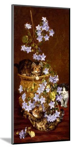 Kittens and Flowers, c.1903-Wilson Hepple-Mounted Giclee Print
