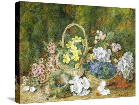 Spring Flowers and a Bird's Nest on a Mossy Bank-George Clare-Stretched Canvas Print