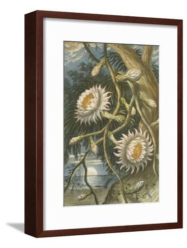 Night-Flowering Cactus, c.1874--Framed Art Print