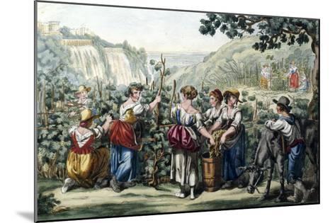 The Grape Harvest-Bartolomeo Pinelli-Mounted Giclee Print