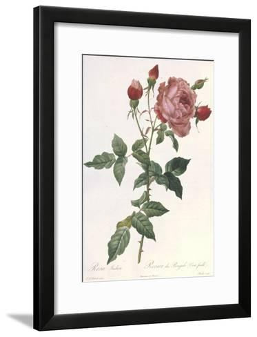 Bouquet of Rose, Anemone and Clematis-Pierre-Joseph Redout?-Framed Art Print