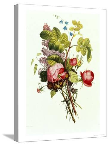 Bouquet of Rose, Lilac and Auricula-Jean Louis Prevost-Stretched Canvas Print
