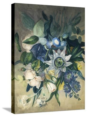 Study of Convulvulus, Passion Flower and Rose, c.1840--Stretched Canvas Print