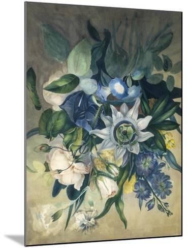 Study of Convulvulus, Passion Flower and Rose, c.1840--Mounted Giclee Print